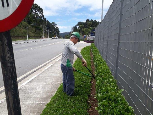 Empresa manutenção de jardinagem