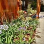 Projeto de paisagismo residencial